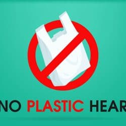 Plastic Ban Essay in English