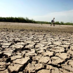 Essay On Drought For Students & Children